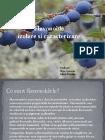 Flavonoide-izolare Si Caracterizare (2)
