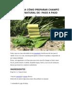 Aloe Vera Cómo Preparar Champú Sólido Natural