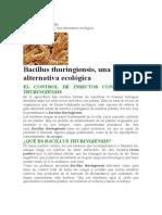 Bacillus Thuringiensis, Una Alternativa Ecológica Insecticida
