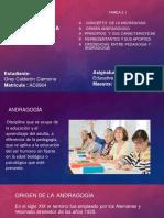 Diapositiva de Andragogìa