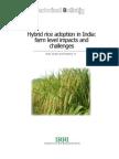 Hybrid Rice Adoption in India