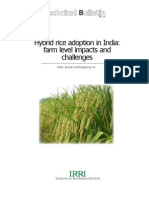 Hybrid Rice Adoption in India