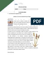 2.1- C - F - 1 FICHA DE LECTURA -- (2)