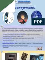 PROYECTOS TRANSVERSALES INTELCOC