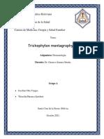 TRICHOPHYTON MENTAGROPHYTES- Dermatologia