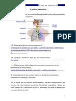 Ficha2PROF