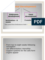 Fetal_Development