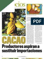 pcc_cacao_entrevistaes