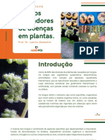 Cms Files 40976 1608029812fungos Causadores de Doenas de Plantas Compressed