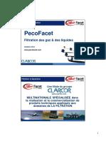0-111010-PecoFacet (Résumé)