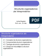Tema 4. Structurile organizatorice_PPS