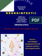 29_NeuroinfSTOM