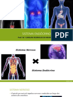Aula Sistema Endócrino Humano