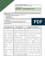 Cuadro Comparativo-2-JR