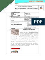 Guia6-Lecto10-S-ALVAREZ -MARCO RAMIREZ