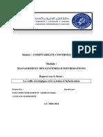 Thème 5 La Veille Stratégique Et Le Système d'Information MSI