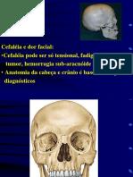 Osteologia Cranio