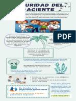 Infografía Seguridad de Paciente