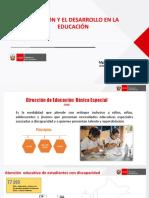 INCLUSION Y EL DESARROLLO EN LA EDUCACION_MINEDU