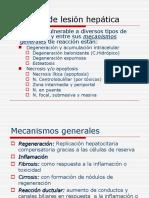 Tema 13 Patologia Digestiva III Higado