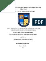 TRABAJO DE PROYECTOS N°01 INDIVIDUAL