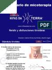 Protocolo.tiroiditis de Hashimoto