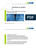 GEXSI_Global-Jatropha-Study_FULL-REPORT