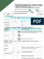 Pauta monitoreo lectura -informe a DEPROV(3) PORTALES[1]
