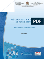 3-MNP Programme Formation