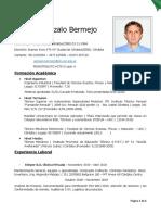 Cv Bermejo Gonzalo