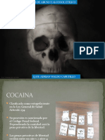 Drogas y Alcohol,Forense