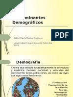 Determinantes demográficos