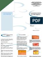 Triptico Miguel Hernandez Conocimeintos Basicos de Riesgos Quimicos PDF