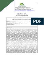 Relatório Final da Iniciação Cinetífica Bruno Augusto da Costa