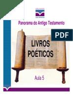 poeticos ibcu apostila_panoramaat_05_ppt