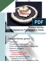 slidesfungos-150902154128-lva1-app6892