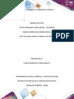 PASO 3 - ACTIVIDAD COLABORATIVA