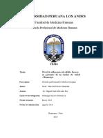 Nivel de adherencia al sulfato ferroso en gestantes de un Centro de Salud