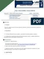 Práctica On line La célula animal y la célula vegetal, terminado (2)