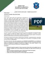 PRODUCCIÓN EN LENGUAJES Y COMERCIALIZACIÓN Y PUBLICIDAD 5TO AÑO