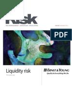 Risk-Feb2010