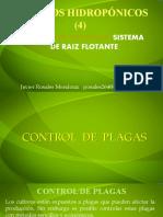 CUARTA PARTE CONTROL DE PLAGAS Cultivos hidropónicos