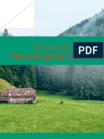 Curso de Programacion Neurolinguistica Pnl Gratis