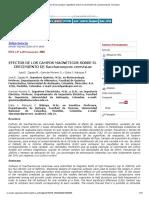 Efectos campos magnéticos crecimiento saccharomyces cerevisiae