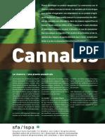 id_cannabis