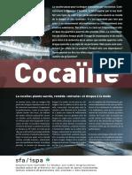 id_cocaine