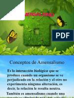 AMENSALISMO y PARASITISMO