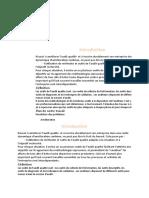 Introduction audit qualite