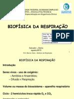 Aula Biofísica da Respiração Marcos Viana