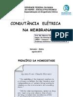 Aula de Bioeletrogenese Marcos Viana